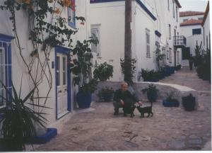 Greek island and a couple Greek cats